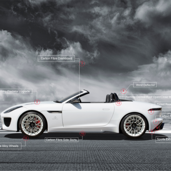 F-Type Performance and Style Points Predator